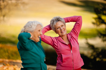 Portrait of a smiling senior woman doing stretching exercises with her friend.