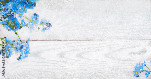 Rustic Spring wooden background with forget-me-nots flowers