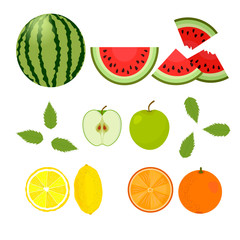Berries and fruits. Watermelon, orange, lemon, apple on a white background. Vector