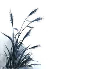 watercolor reeds or grass ink Traditional oriental. asia art style.isolated on a white background
