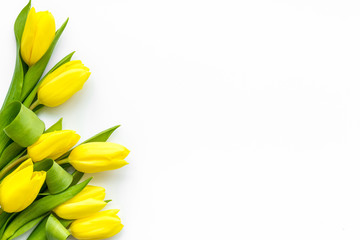 Spring composition. Delicate yellow tulips on white background top view space for text border