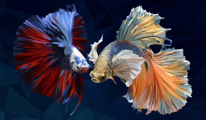Illustration  low polygonal of betta fish.