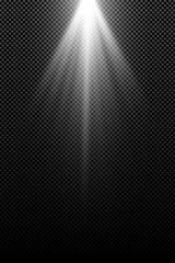 Wall Mural - Stylish white light effect isolated on a transparent background. White rays. Lamp beams. Bright abstract light. Radiation from above. Vector illustration