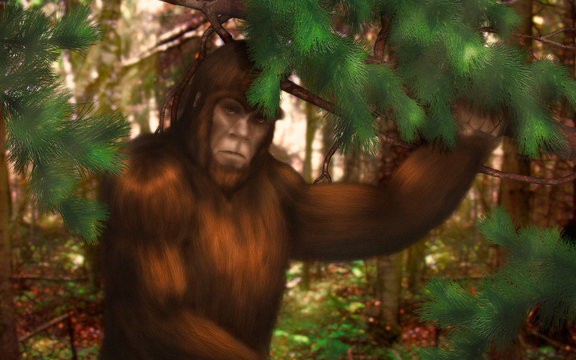 Bigfoot hiding in the woods during the day.