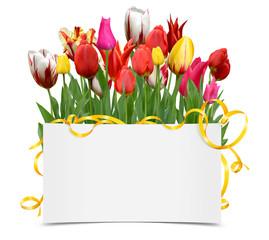 Blumen 1049