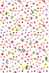 Fototapete - Flowers pattern flat lay.