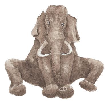 Watercolor illustration - sitting alone elephant