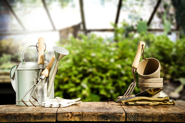 Fototapete - Desk of free space and garden tools. Free space for your decoration.