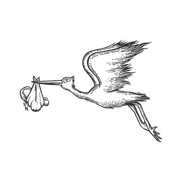 Stork carry baby sketch engraving vector illustration. Scratch board style imitation. Hand drawn image.
