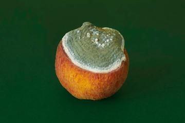 Close up of moldy peach