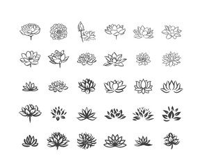 Vector illustration concept of Abstract vector lotus flower symbol icon on white background