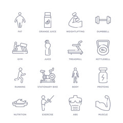 set of 16 thin linear icons such as muscle, abs, exercise, nutrition, proteins, body, stationary bike from health collection on white background, outline sign icons or symbols