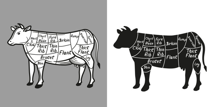 British cuts of beef diagram. Beef cutting scheme lettering. Vector illustration.