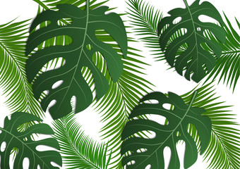 Tropical bright flyer, leaflet with monster leaves and palm trees. Exotic tropical trendy print. Invitation to a party in an exotic style. Vector illustration.
