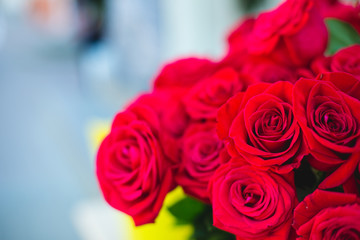 A bouquet of fresh red roses close up