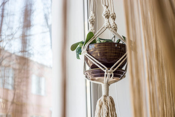Handmade macrame for flowers in the interior of the concept