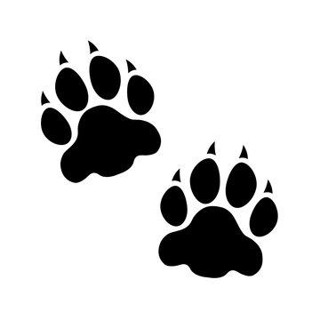 Raubtier Pfoten Bär/Tiger/Wolf