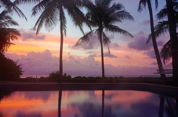 Dramatic purple and orange sunrise colors over palm trees in Bora Bora, French Polynesia