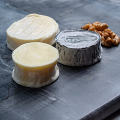 Assortment of French soft goat cheeses, Chevre Cendre, Cabecou Du Perigord and Chevre De Dordogne served on grey marble board
