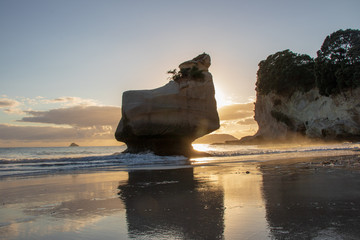 Smiling sphiny rock during sunrise seen on cathedral cove beach, hahei, coromandel, new zealand