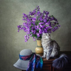 Still life with bouquet of garden bluebell flowers and gray kitty