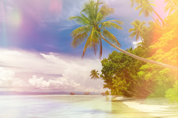 Background of Paradise island -  landscape of tropical beach - calm ocean, palm trees, blue sky