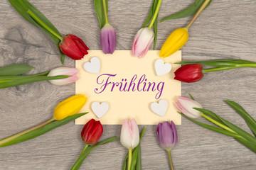 Tulpen und Karte: Frühling