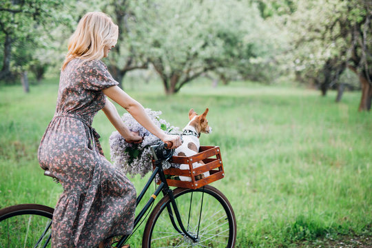 back girl blonde in dress and glasses rides a bike with a basket with a dog and flowers in the garden