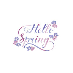hello spring phrase with blue and pink flowers. handwritten calligraphic slogan. design element for greeting card, banner, invitation, vignette, flyer. text calligraphic element. vector illustration