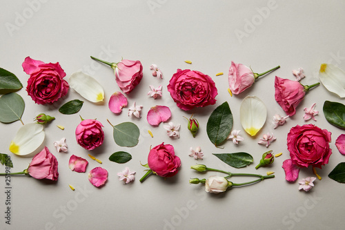 top view of pink roses, leaves, buds and petals isolated on grey