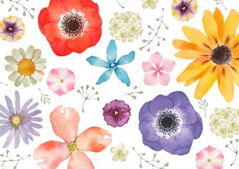 春の花 夏の花 背景 テキスタイル 水彩 Fotoväggar