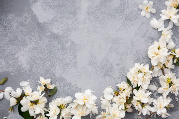 White flowers border. Flat lay. Spring concept. Mother Day background.