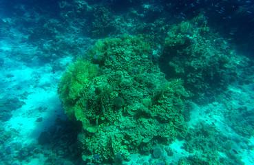 Aquatic Blue Deep Seabed Underwater Background