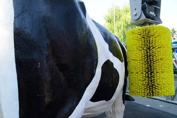 Equipment for keeping cows and model of a cow