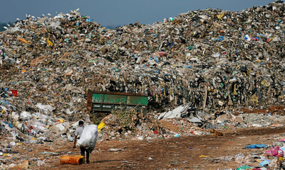 A man collects plastic for recycling in a dumpsite in Colombo