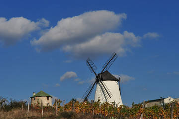 windmill near retz, lower austria, weinviertel, wineyard