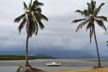 Bei Ebbe gestrandetes Boot zwischen zwei Palmen im Vordergrund