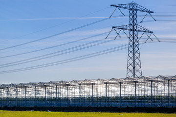 Greenhouse and an electricity pylon