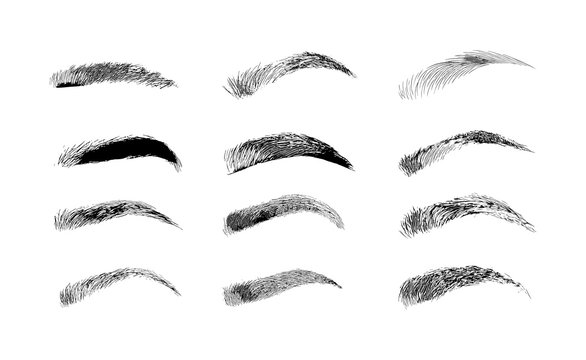 Eyebrow shapes. Various types of eyebrows. Classic type and other. Trimming. Vector illustration with different thickness of brows. Makeup tips.