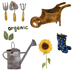 watercolor gardening set ofsun flowers, watering can, garden instruments and wooden tray