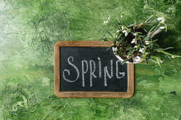 Calligraphic inscription hand lettering letters spring on black chalkboard with blossom snowdrops in ceramic mug over green texture background. Flat lay, space. Spring coming concept.