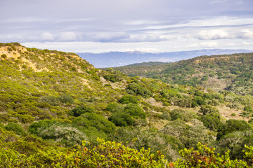 Landscape in Fort Ord National Monument, Salinas, California