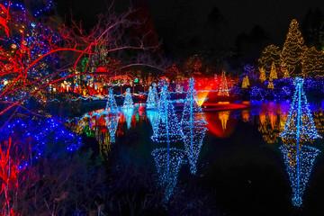 Christmas Lights Reflection Van Dusen Garden Vancouver British Columbia Canada