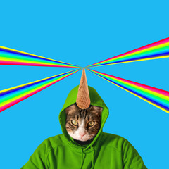 Cat head with rainbow, collage pop art concept design. Minimal summer background.