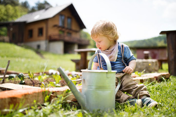 Boy in garden with watering can