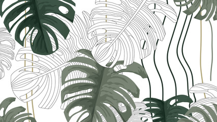 Tropical plants and white background pattern-vector1
