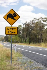 Warning sign, warning of koalas, coastal road A1, Queensland, Australia, Oceania