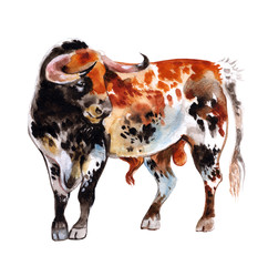 Watercolor bull with red spots