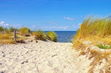 Poel Strand Am Schwarzen Busch - Poel beach at the black bush on the island of Poel in Germany