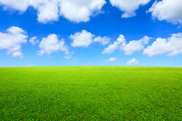Green grass and blue sky with white clouds Wall mural